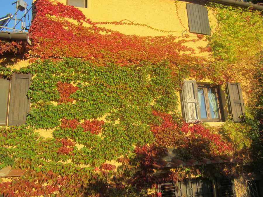 Magnifique B&B, hotels de charme, chambre d'hôte en pleine campagne Toscane, à quelques kilomètres de Florence. Ⓒ María Calvo. Contact: info@voyagetoscane.fr