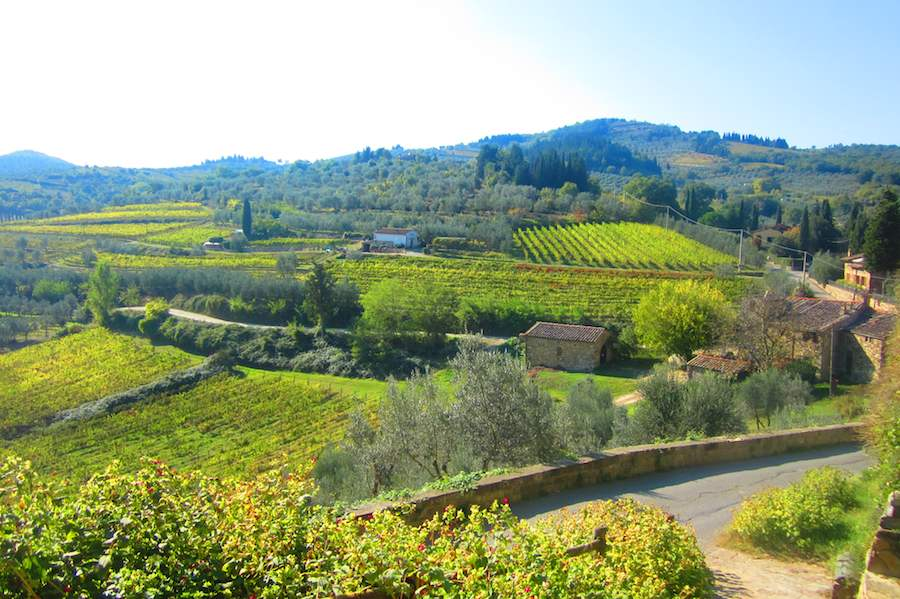 Le beau panorama de vignobles depuis le village de Montefiorale, Chianti. Ⓒ María Calvo.