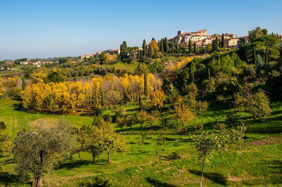 Paysage typique des Collines Pisanes.