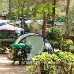 Campings en Toscane