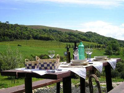 Magnifique environnement des agritourismes de Toscane. Vignobles, dégustation de vin, oliviers, des châteaux, un logement dans la nature. Divina Toscana.