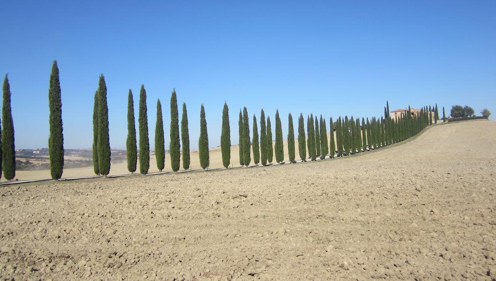 Les cyprès gardent les sentiers qui mènent vers les petits palaces au milieu des champs pensifs.©María Calvo.